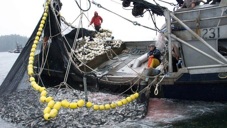 рыболовный сейнер керчанин